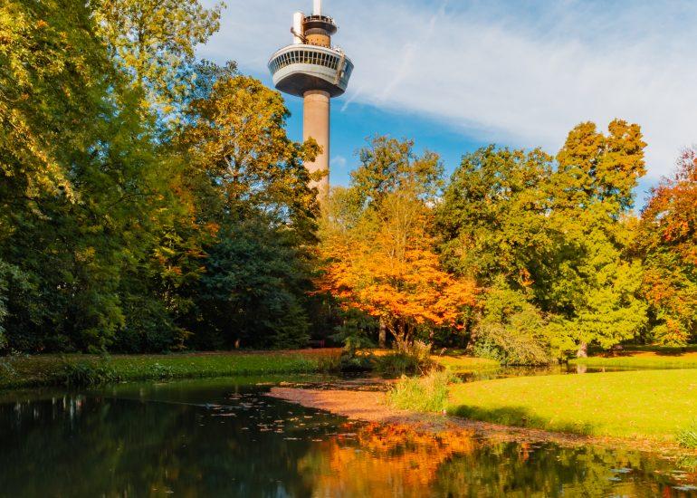 Herfst in het Euromastpark