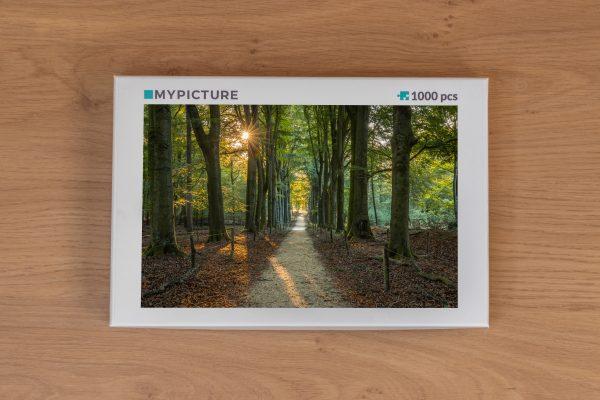 Doos puzzel - De zon schijnt door de bomen - Veluwezoom