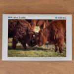 Doos puzzel - Stoeiende Schotse Hooglanders