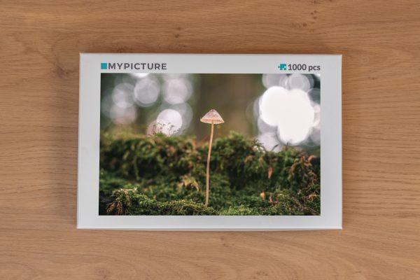 Doos puzzel - Een paddenstoel sprookje