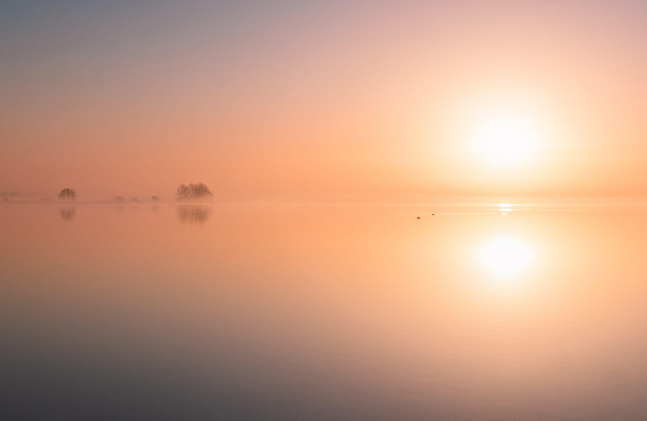 Mistige zonsopkomst aan de Reeuwijkse Plas