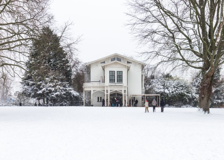 Sneeuw in het Park bij Parqiet